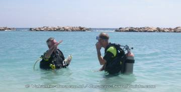 Learn to Dive? PADI Dive Operators