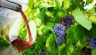 Curacao Winery