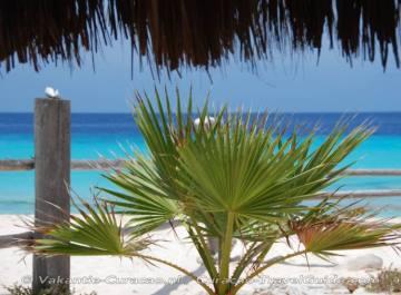 View white sandy beach