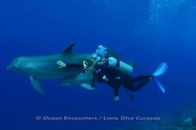 Ocean Encounters